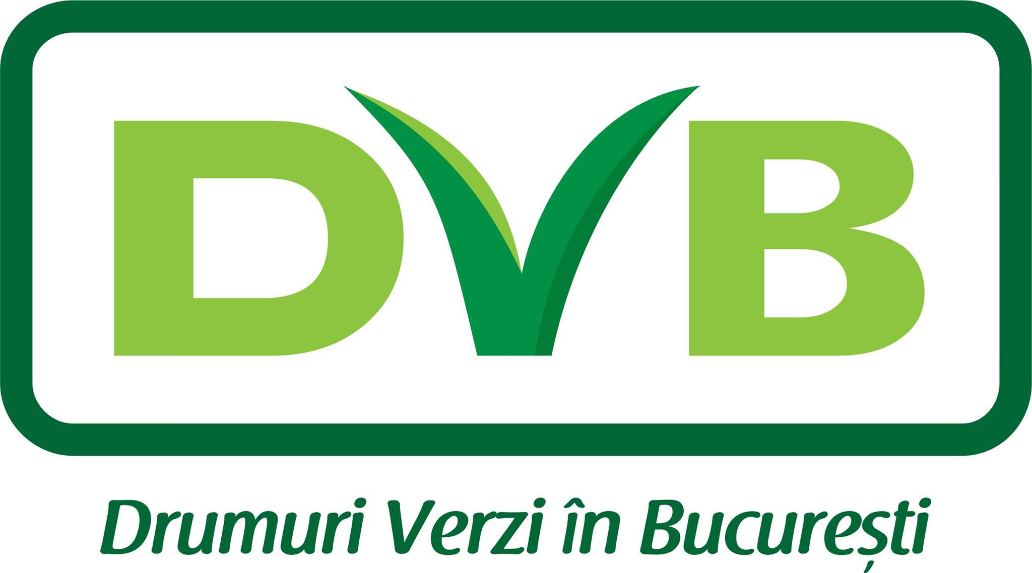 Drumuri Verzi în București